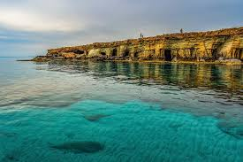 ciprusi utak